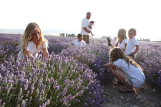 A family in a lavender field